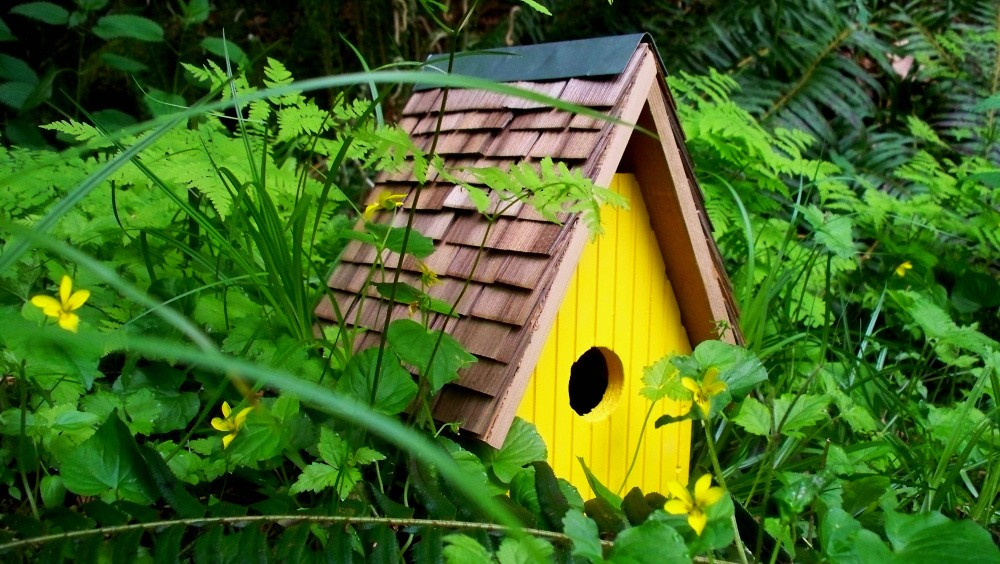 simple little bird house from etsy
